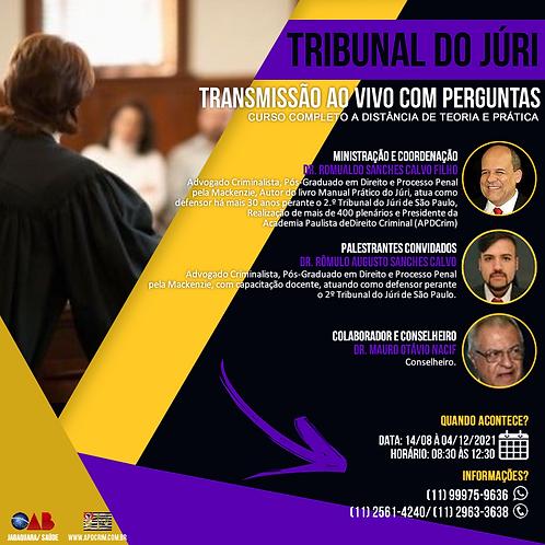 Curso Completo a Distância de Teoria e Aspectos Práticos do Tribunal do Júri