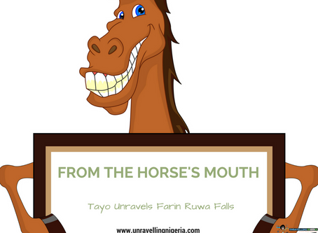 From The Horse's Mouth | Tayo Unravels Farin Ruwa Falls