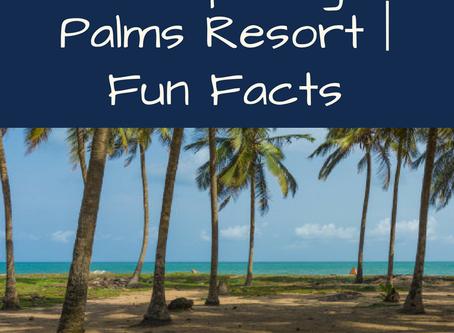 Whispering Palms Resort   Fun Facts
