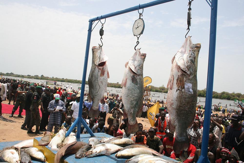fishing-prize