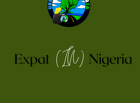 Expat (IN) Nigeria : I Am Not Enjoying My Life In Nigeria