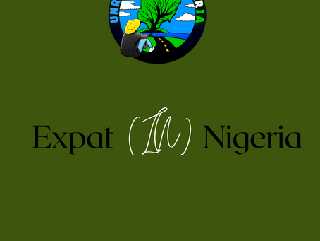 Expat (IN) Nigeria : Nigeria should be more than what it is, it has a great potential