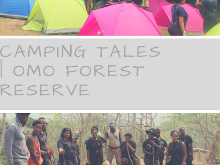 Camping Tales | Omo Forest Reserve
