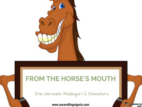 From The Horse's Mouth | Ene Unravels Maiduguri & Damaturu