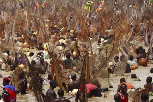 nigeriafishing013