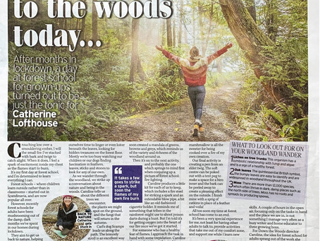 Down the Woods - Adult Forest School in the Express Newspaper