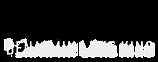 BLK Logo_2020_Landscape.png