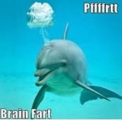 Dolphin Brain Fart Joke