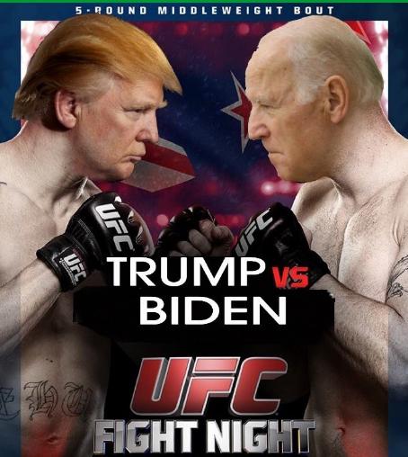 Trump vs Biden UFC