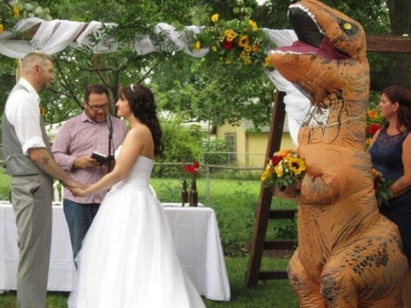 Bridesmaid Dresses As Dinosaur