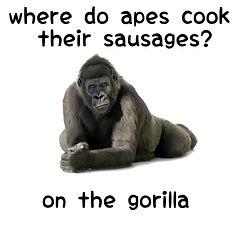 funny gorilla pun