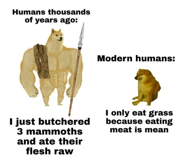 meme about vegans eating grass