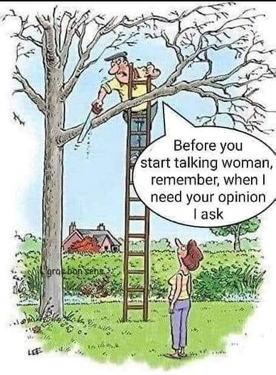 Sexist Joke Of Man Cutting Tree Branch