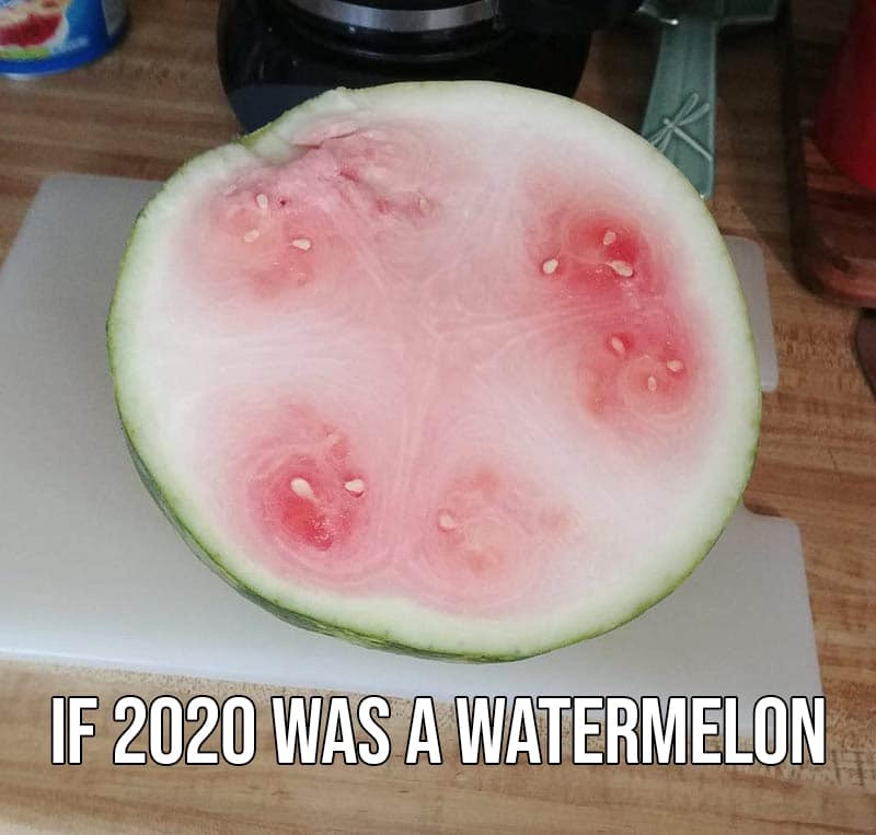 If 2020 was a watermelon meme