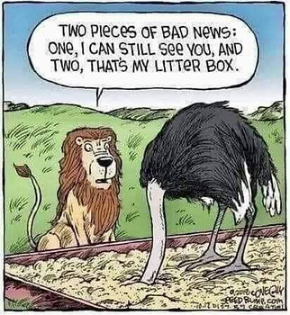 Funny Lion And Ostrich Joke