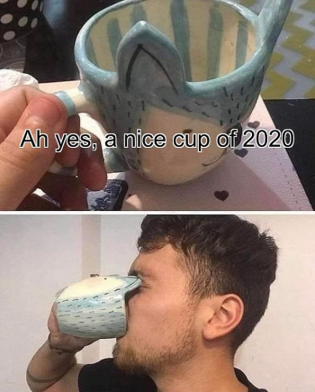 2020 cup joke