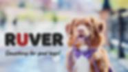 Stas Mitskevichus - #Rover (en) (1).png