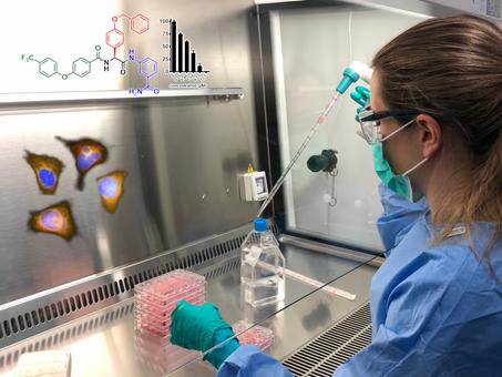 Innovative Drug Discovery