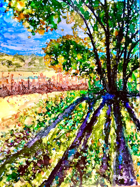 Riparian Shadows (Watson Lake, Prescott, AZ)