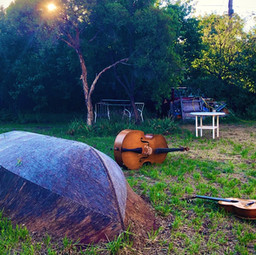 Matty's backyard 6.jpg