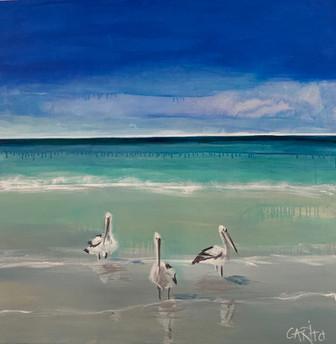 Moreton Pelicans (commission SOLD)