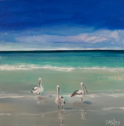 Moreton Pelicans (commission SOLD)