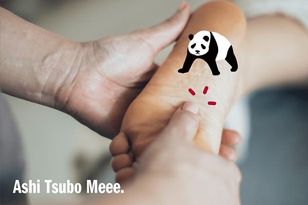 Ashitsubo100.png