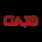 Cajo Records Logo - White.png