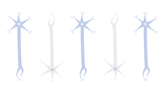 Blog Cover Neurons.png