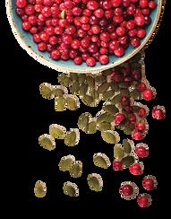 Bowl of Roasted Pepitas and Dried Cranberries Hemp CBD