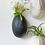 Thumbnail: Baby Bush Vase - Black