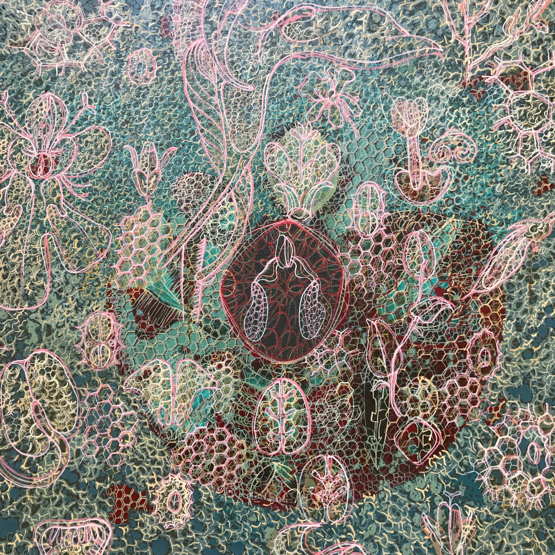 willemien de villiers | orchid, detail |  POA
