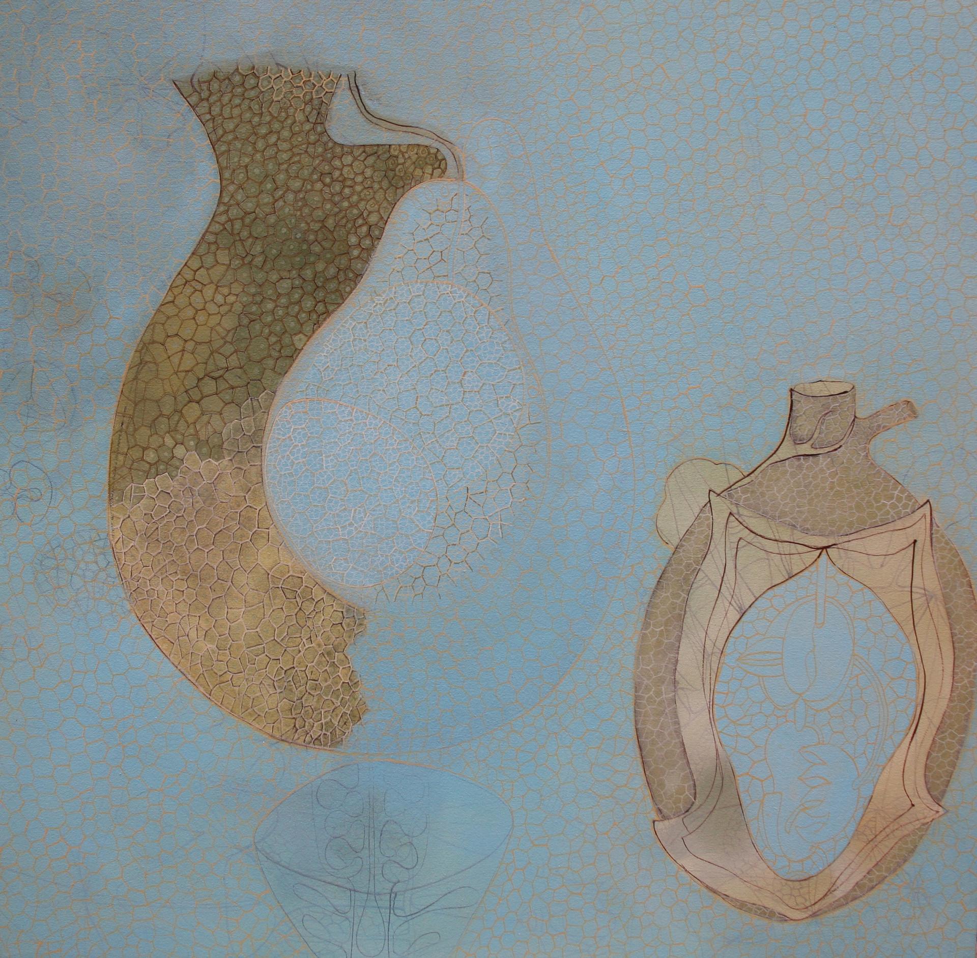 willemien de villiers | transparent ovule | POA