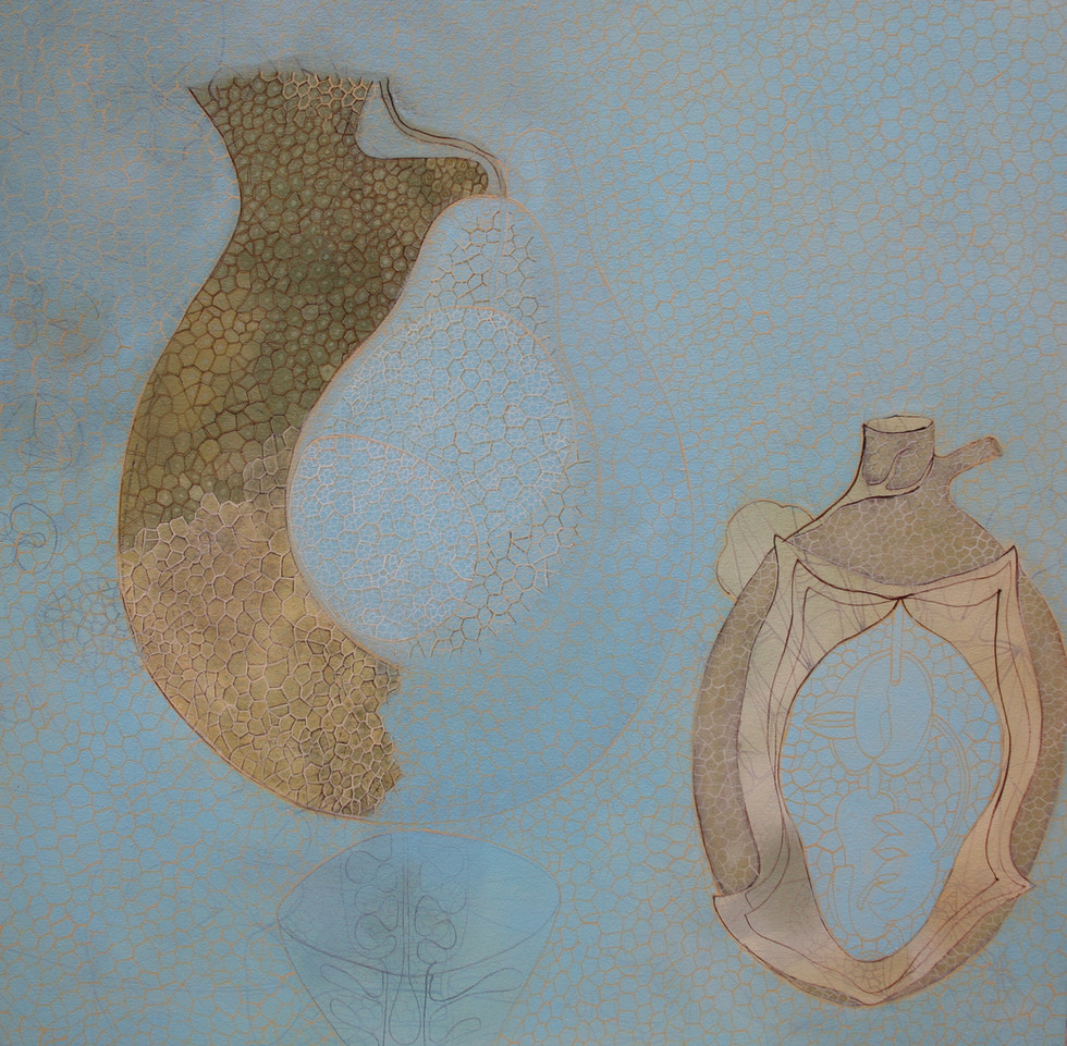willemien de villiers   transparent ovule   POA