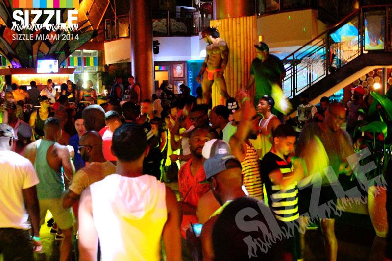 BONGOS2014 2.jpg
