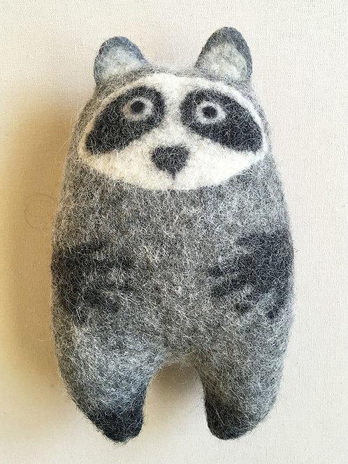 Cozy Raccoon