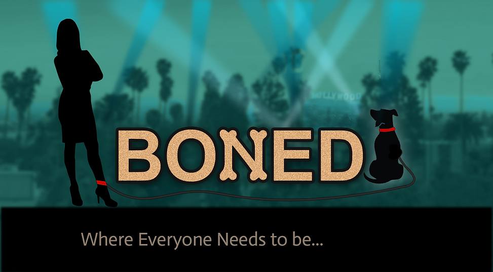 bonedtheseries.png