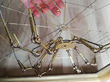How to reassemble your spider