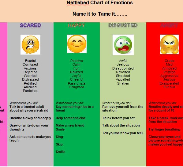Nettlebed Chart of Emotions