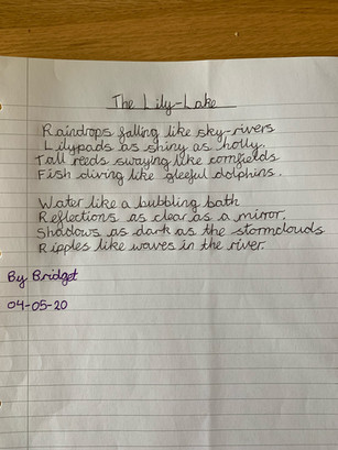 Bridget's Simile poem.jpeg