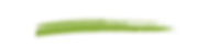 green brush stroke graphic-02.png