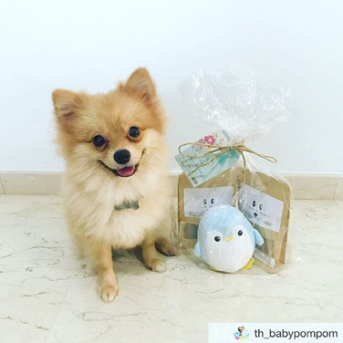 Happy advanced barkday 🐶🎂to _th_babypompom! Thanks for sharing your photo with us.jpg