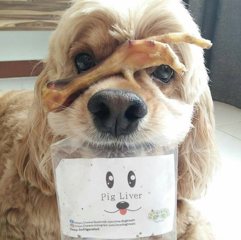 Repost from _goldenthecockerspaniel _Glad that you enjoyed the treats! We promise to provide the best for your furry kids! Shop now at 👉 htt