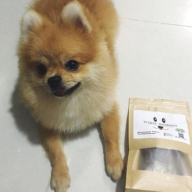 No words can describe how happy we are when owners share that their furry babies love our treats! We believe in bringing the freshest, healt