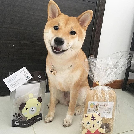 How can Monday be blue for Neko & her fur friends 🐶 who just had a fantabulous bark day pawty 🎉🎊a few days ago_ Check out the goodie bag and