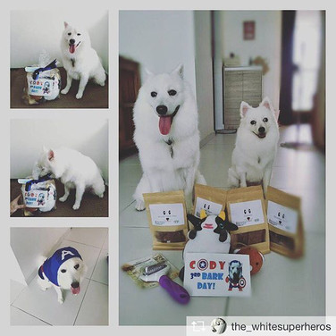 Happy 3rd Bark Day, Cody! _Repost from _the_whitesuperheros__Your satisfaction is our greatest reward! Thank you for believing in us 🤗! For_