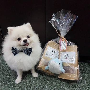 It's TOT 👅! Congrats to Muffin on your win! Hope you enjoy the treats and toy dolphin 🐬 prepared for you! __Regrann from _kaypohmonstermuffi