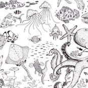pescioloni.jpg
