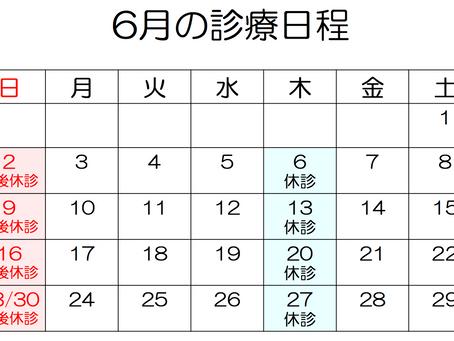6月の診療日程【追記あり】