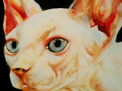 catherine mcinnis art sphinx peintre